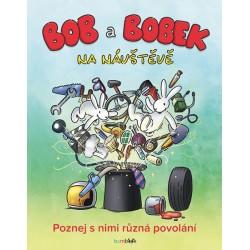 Bob a Bobek na návštěvě - Poznej s nimi různá povolání