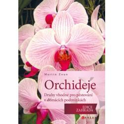 Orchideje - druhy vhodné pro pěstování v domácích podmínkách
