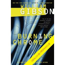Jak vypálit Chrome