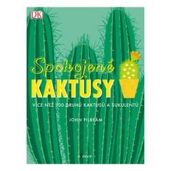 Spokojené kaktusy