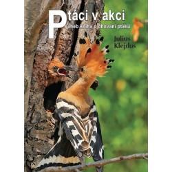 Ptáci v akci aneb kniha o chování ptáků
