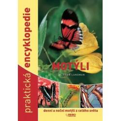 Motýli - denní a noční motýli z celého světa - praktická encyklopedie