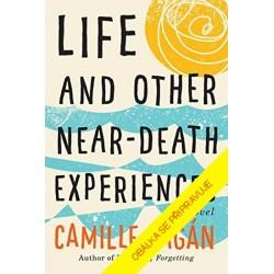 Život a jiné předsmrtné zážitky