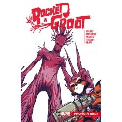 Rocket a Groot 1 - Profíci v akci