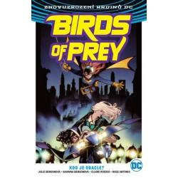 Birds of Prey 1 - Kdo je Oracle?