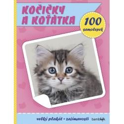 Kočičky a koťátka - Plakát a 100 samolepek