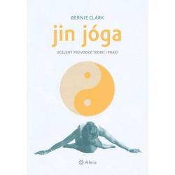Jin jóga - Ucelený průvodce teorií i praxí