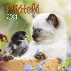 Kalendář 2021 - Přátelé, nástěnný
