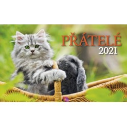 Kalendář 2021 - Přátelé, stolní