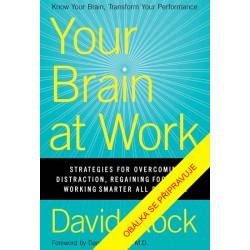 Jak pracuje váš mozek