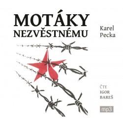 Motáky nezvěstnému - 3 CDmp3 (Čte Igor Bareš)