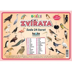 Sada 24 karet - zvířata (ptáci) A5