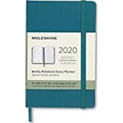 Moleskine: Plánovací zápisník 2020 tvrdý světle zelený S
