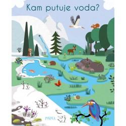 Kam putuje voda?