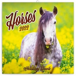 Kalendář 2022 poznámkový: Koně – Christiane Slawik, 30 × 30 cm (západní kalendárium)