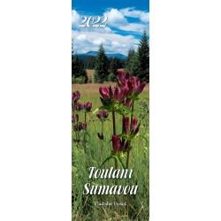 Kalendář 2022 - Toulání Šumavou úzký nástěnný